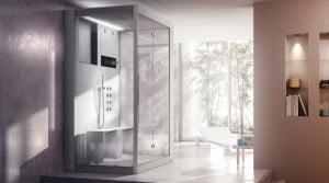 wellness jacuzzi sauna